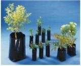 Embalagem Para Plantas Jardim Liderança