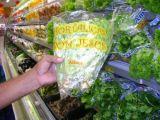 Embalagem Plastica Para Hortaliças Jardim Cotinha
