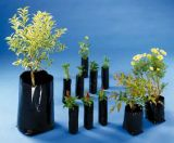 Embalagens Plasticas Para Mudas Sítio Pinheirinho